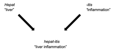 liver disorder